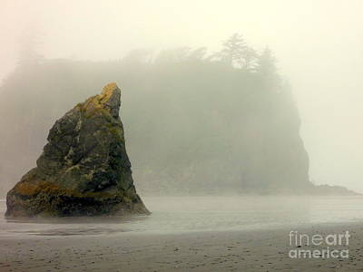 Photograph - Shore Fog by John Potts