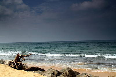 Photograph - Shore Line by Ramabhadran Thirupattur