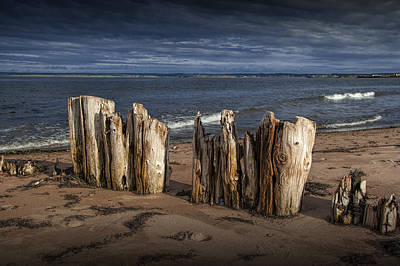 Photograph - Shore Pilings On Prince Edward Island by Randall Nyhof