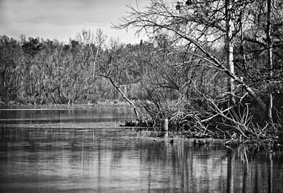 Photograph - Shoreline 4 by Greg Jackson