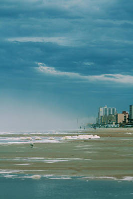 Shoreline Daytona Art Print by Paulette Maffucci