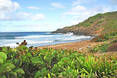 Photograph - Shoreline Las Cabezas De San Juan by Alan Lenk