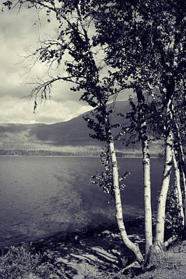 Photograph - Shoreline by Leanna Lomanski