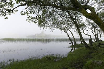 Photograph - Shoreline Loch Awe  by Gary Eason