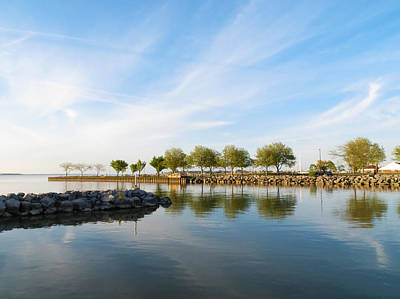Shoreline Park Art Print by Shawna Rowe