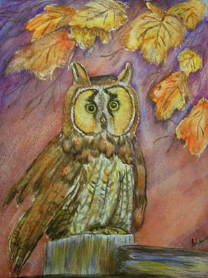 Painting - Short Eared Owl by Belinda Lawson