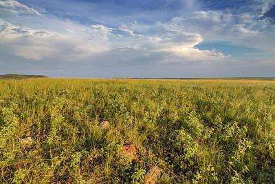 Shortgrass Prairie At The Bitter Creek Art Print by Chuck Haney