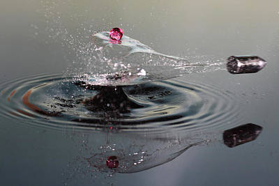 Photograph - Shot Of A Drop Shot by Lex Augusteijn
