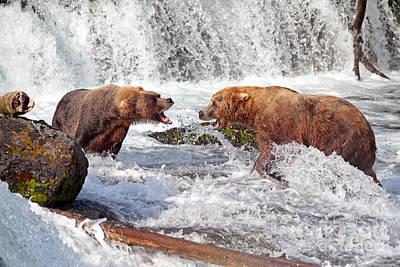 Photograph - Shouting Match by Bill Singleton
