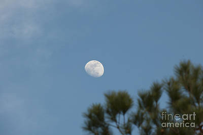 Photograph - Show Moon by Dale Powell