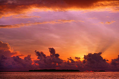 Photograph - Show Must Go On. Tropical Sunset by Jenny Rainbow