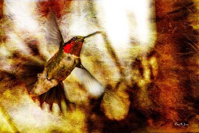 Photograph - Hummingbird - In Flight - Showing Color by Barry Jones