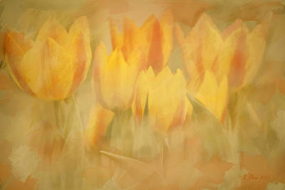 Showtime Tulips Art Print