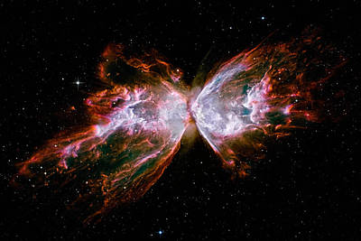 Photograph - Shredded Butterfly Ngc 63 by Weston Westmoreland