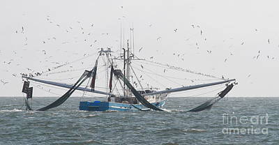Boat Photograph - Shrimp Boat And Birds by Cathy Lindsey