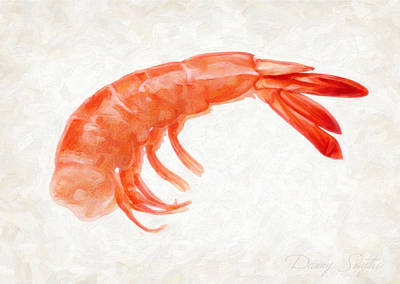 Shrimp Art Print by Danny Smythe