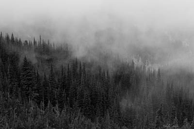 Photograph - Shrouded In Mist by Heidi Smith