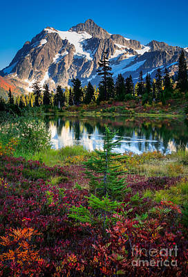Fall Scenes Photograph - Shuksan Autumn by Inge Johnsson