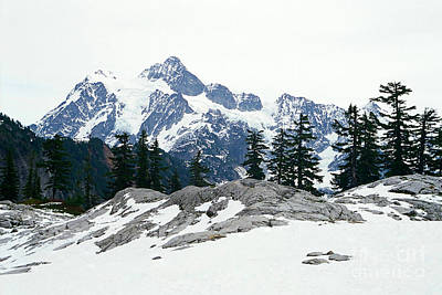 Photograph - Shuksan Winter Blanket by Frank Townsley