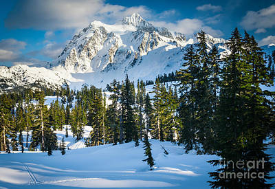 Park Scene Photograph - Shuksan Winter Paradise by Inge Johnsson