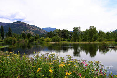 Photograph - Shuswap River by Alyce Taylor