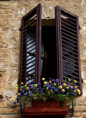Photograph - Shutters And Flowers by Caroline Stella