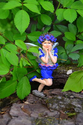Photograph - Shy Guy Woodland Fairies by Linda Rae Cuthbertson