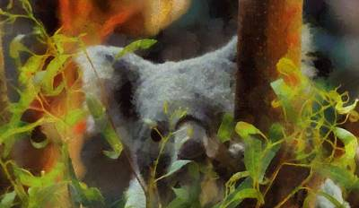 Koala Painting - Shy Koala by Dan Sproul