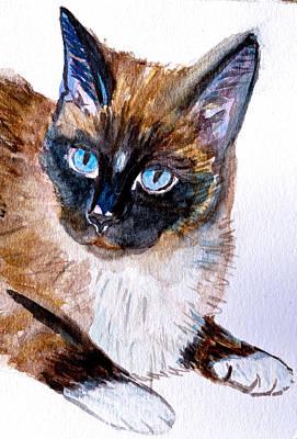 Siamese Cat Portrait Art Print