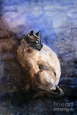 Painting - Siamese Cat by Zaira Dzhaubaeva