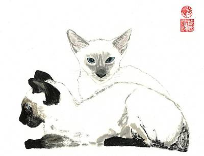 Painting - Siamese Cats by Terri Harris