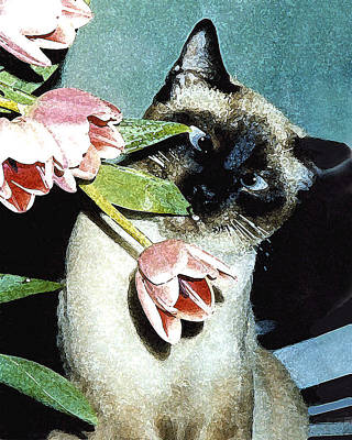 Watercolor Pet Portraits Photograph - Siamese In Tulips by Elia Peters