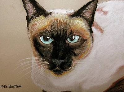 Pastel - Siamese by Mike Benton