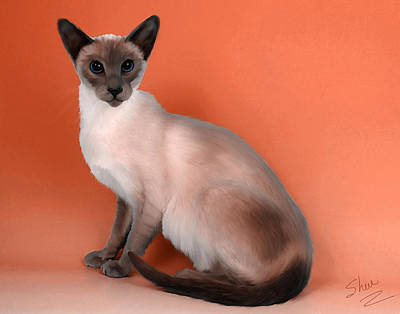 Domestic Short Hair Cat Painting - Siamese by Shere Crossman