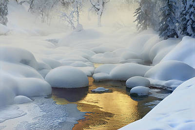 Haze Photograph - Siberia. -37a?c (-35a?f) by Dmitry Dubikovskiy