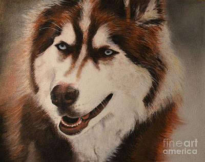 Huskie Wall Art - Drawing - Siberian Husky by Isri Lara Sambo