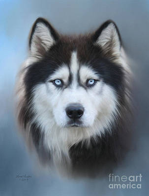 Digital Art - Siberian Husky by Lena Auxier