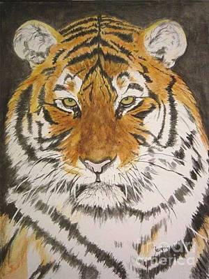 Siberian Tiger Art Print by Regan J Smith