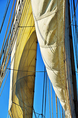 Photograph - Sibling Sails by Jon Exley