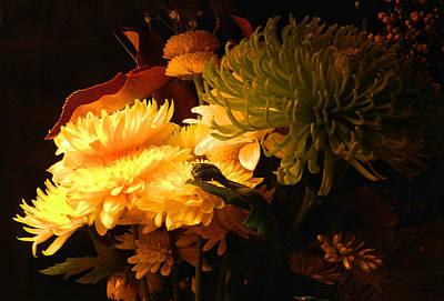 Photograph - Side Light by Grace Dillon
