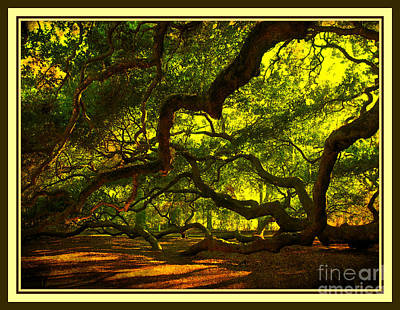 1400 Year Old Tree Photograph - Side Limbs Of The 1400 Year Old Angel Oak by Susanne Van Hulst