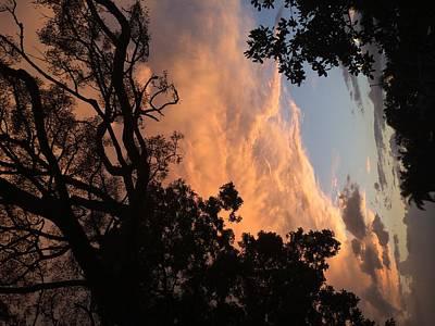 Side Sky Art Print