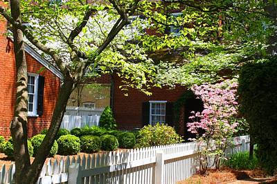 Photograph - Side Yard 3 by Kathryn Meyer