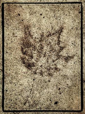 Sidewalk Imprint Art Print