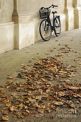 Photograph - Sidewalk by Inge Riis McDonald