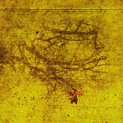 Photograph - Sidewalk Runes by Frank Winters