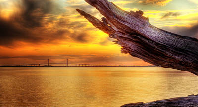 Photograph - Sidney Lanier Bridge From Driftwood Beach by Greg and Chrystal Mimbs