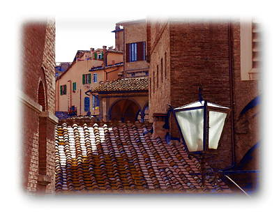 Design Turnpike Books Royalty Free Images - Siena Rooftops Royalty-Free Image by Jacqueline M Lewis