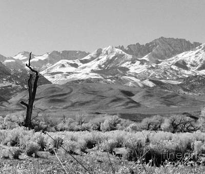 Photograph - Sierra Black And White by Marilyn Diaz