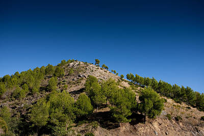 Photograph - Sierra De Mijas by Paul Indigo
